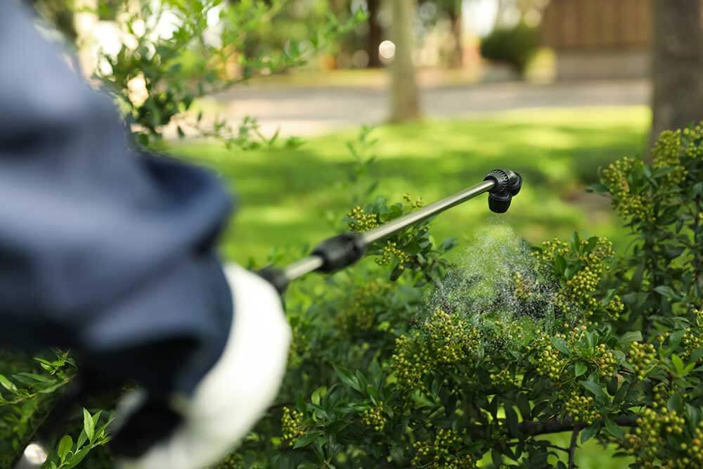 Fertilizing and Pest Control