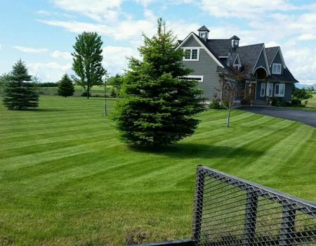 Spring Lawn Care Services In Columbia Falls, Flathead County Or Kalispell, Mt (2)